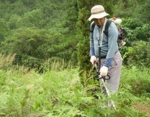 예초기 작업 벌초
